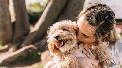 Cuidar a tu mascota puede ayudarte a reducir estrés