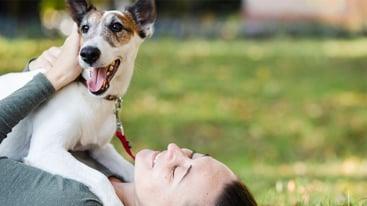 Mascotas ayudan a reducir ansiedad y estrés.